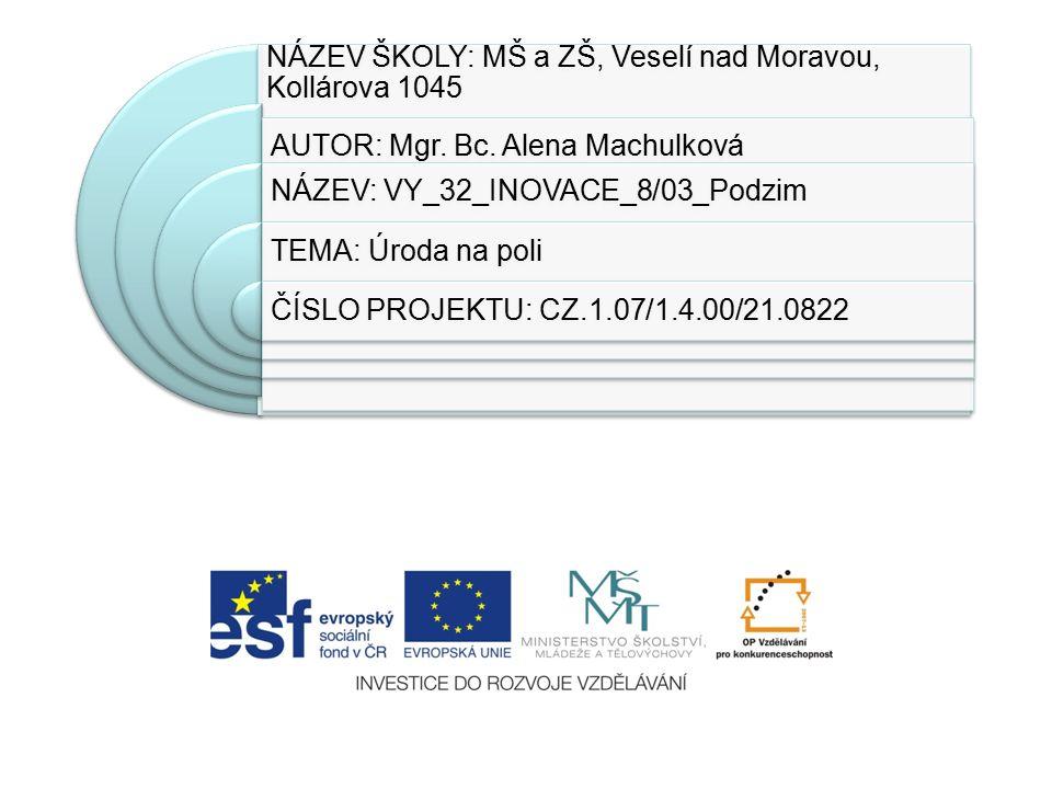 NÁZEV ŠKOLY: MŠ a ZŠ, Veselí nad Moravou, Kollárova 1045 AUTOR: Mgr.