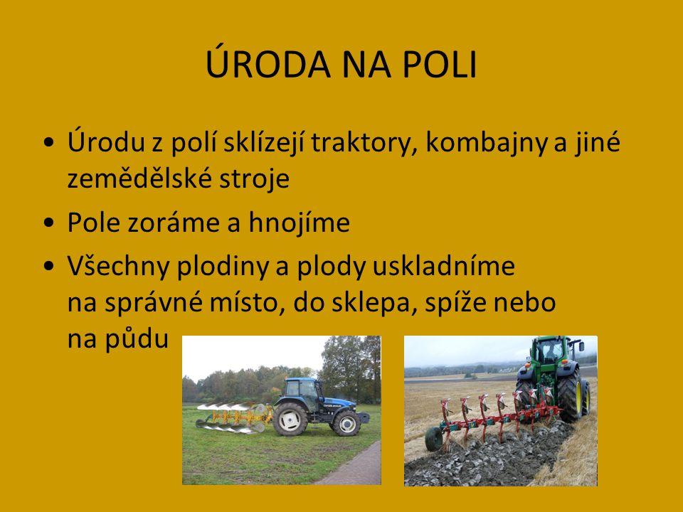 ÚRODA NA POLI Úrodu z polí sklízejí traktory, kombajny a jiné zemědělské stroje Pole zoráme a hnojíme Všechny plodiny a plody uskladníme na správné místo, do sklepa, spíže nebo na půdu