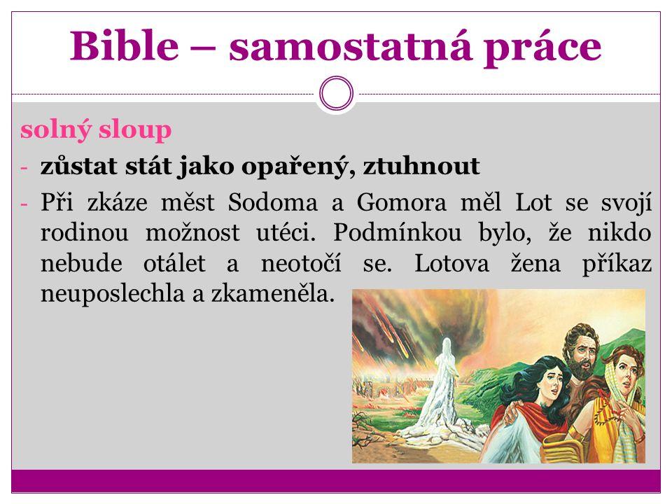 Bible – samostatná práce solný sloup - zůstat stát jako opařený, ztuhnout - Při zkáze měst Sodoma a Gomora měl Lot se svojí rodinou možnost utéci.