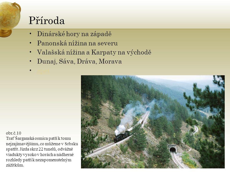 Příroda Dinárské hory na západě Panonská nížina na severu Valašská nížina a Karpaty na východě Dunaj, Sáva, Dráva, Morava zpět obr.č.10 Trať Šarganská osmica patří k tomu nejzajímavějšímu, co můžeme v Srbsku spatřit.