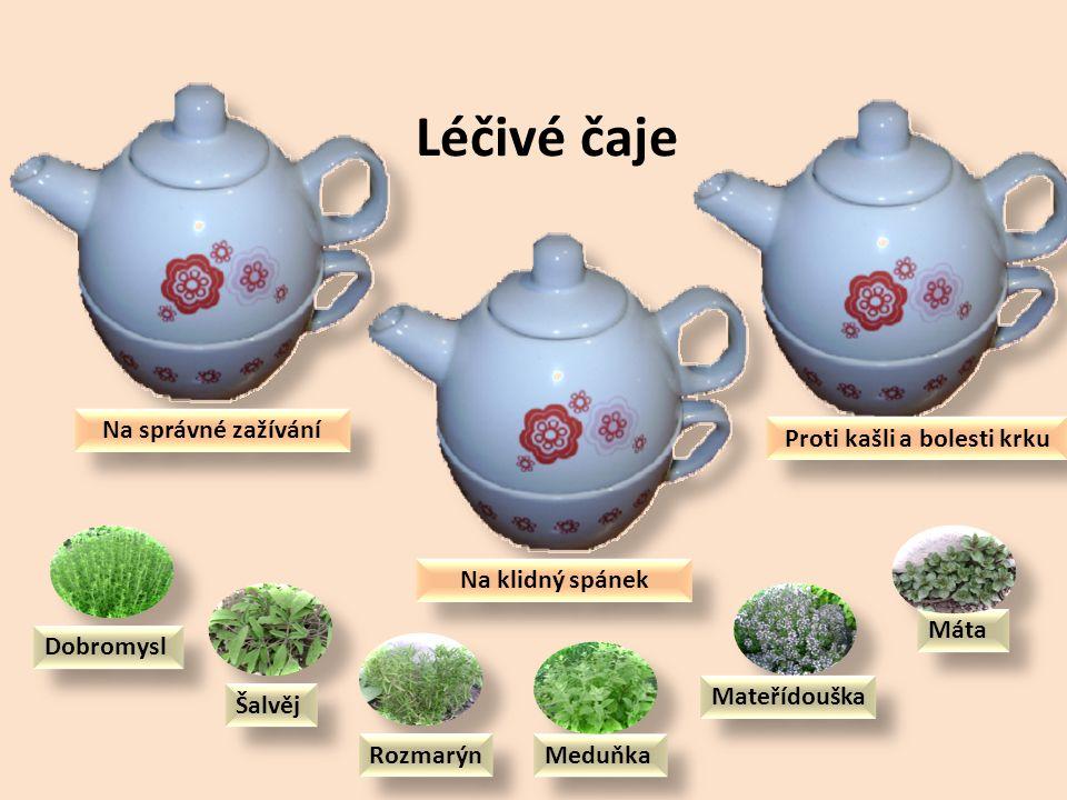 Další léčivé bylinky na našich zahradách Levandule Dobromysl Mateřídouška Rozmarýn Meduňka