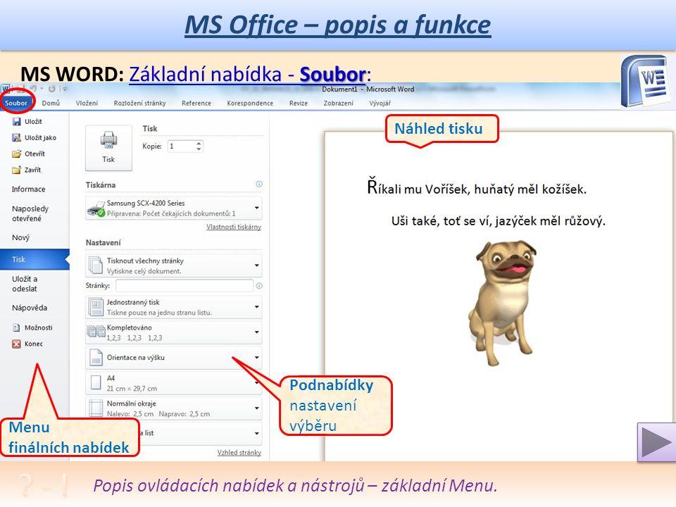 MS Office – popis a funkce MS WORD: Revize Pracovní funkce Revize: Makra programování Popis ovládacích nabídek a nástrojů.