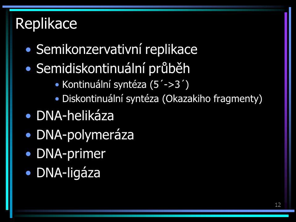 12 Replikace Semikonzervativní replikace Semidiskontinuální průběh Kontinuální syntéza (5´->3´) Diskontinuální syntéza (Okazakiho fragmenty) DNA-helikáza DNA-polymeráza DNA-primer DNA-ligáza
