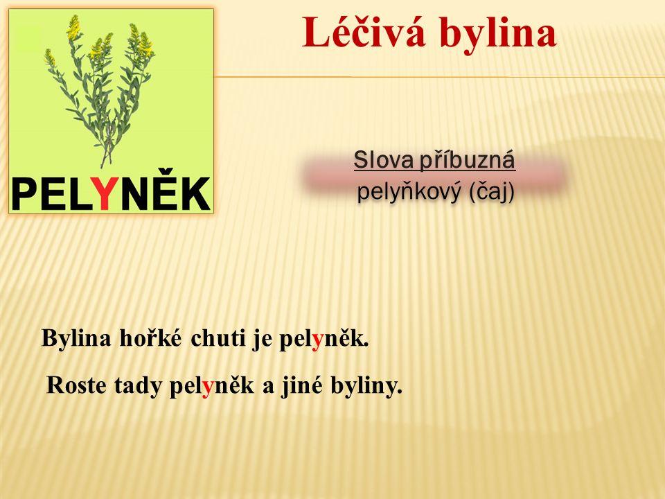 Léčivá bylina Slova příbuzná pelyňkový (čaj) Slova příbuzná pelyňkový (čaj) Bylina hořké chuti je pelyněk. Roste tady pelyněk a jiné byliny.