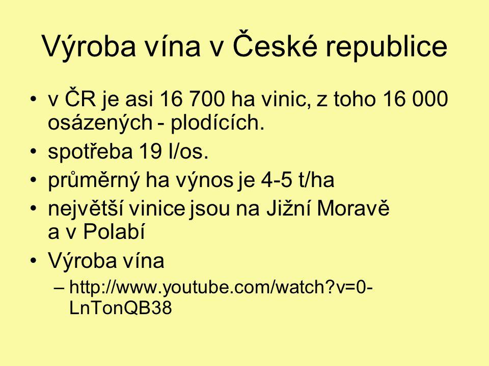 Výroba vína v České republice v ČR je asi 16 700 ha vinic, z toho 16 000 osázených - plodících.