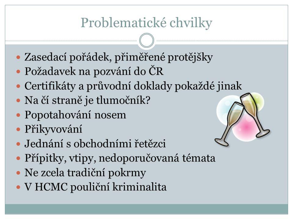 Problematické chvilky Zasedací pořádek, přiměřené protějšky Požadavek na pozvání do ČR Certifikáty a průvodní doklady pokaždé jinak Na čí straně je tlumočník.