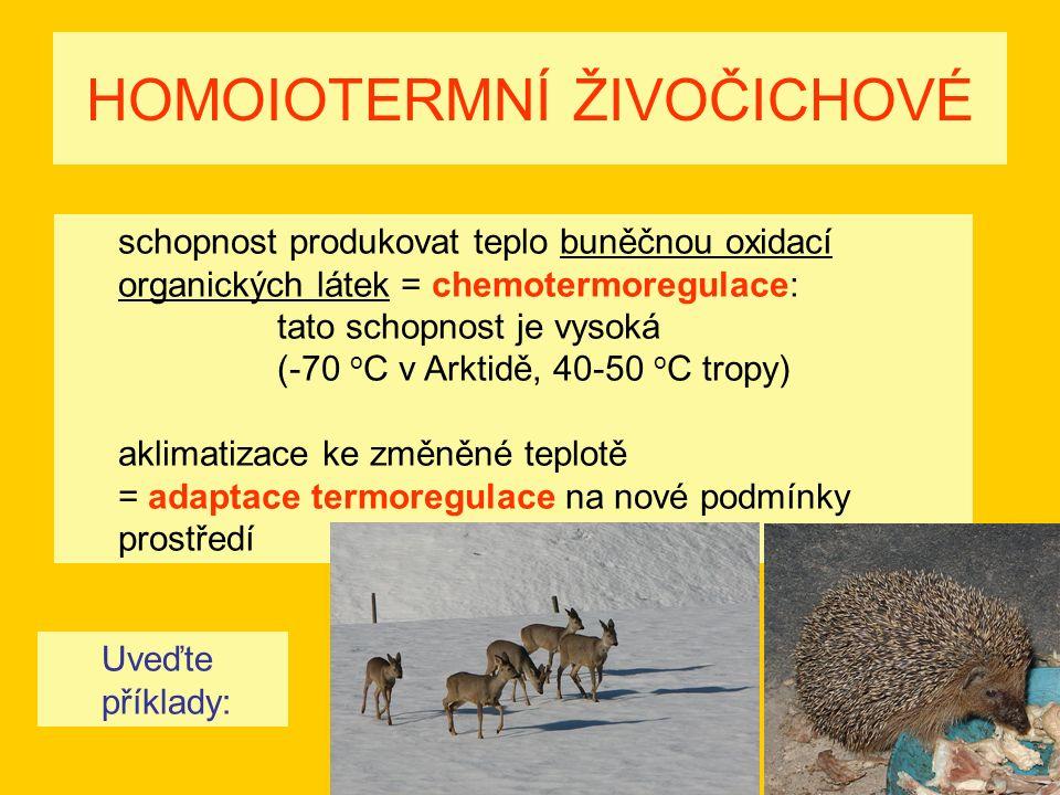 HOMOIOTERMNÍ ŽIVOČICHOVÉ schopnost produkovat teplo buněčnou oxidací organických látek = chemotermoregulace: tato schopnost je vysoká (-70 o C v Arktidě, 40-50 o C tropy) aklimatizace ke změněné teplotě = adaptace termoregulace na nové podmínky prostředí Uveďte příklady: