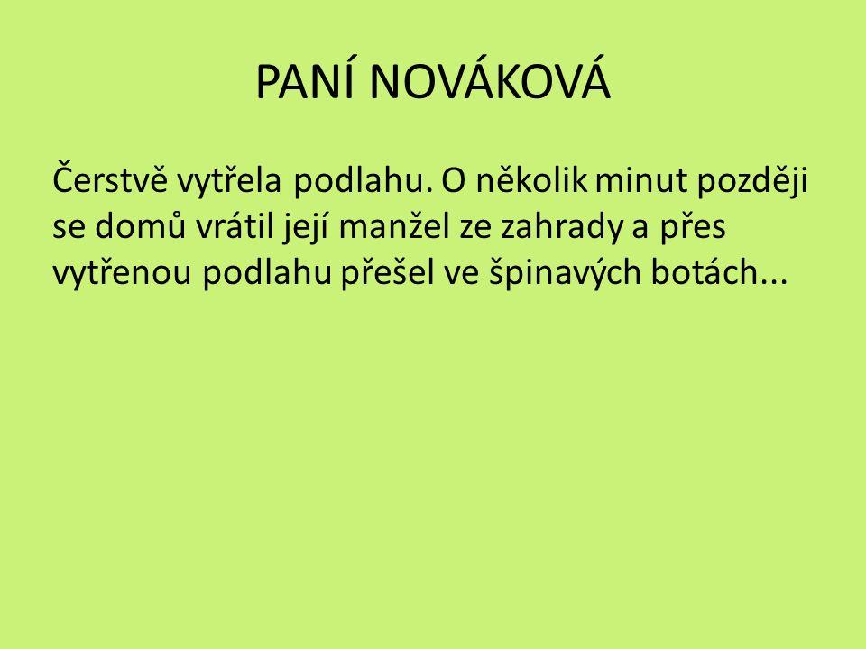 PANÍ NOVÁKOVÁ Čerstvě vytřela podlahu.