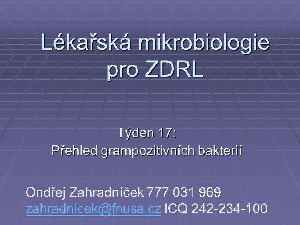 Lékařská mikrobiologie pro ZDRL Týden 17: Přehled grampozitivních bakterií Ondřej Zahradníček 777 031 969 zahradnicek@fnusa.cz ICQ 242-234-100 zahradnicek@fnusa.cz