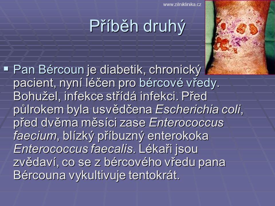 Příběh druhý  Pan Bércoun je diabetik, chronický pacient, nyní léčen pro bércové vředy. Bohužel, infekce střídá infekci. Před půlrokem byla usvědčena