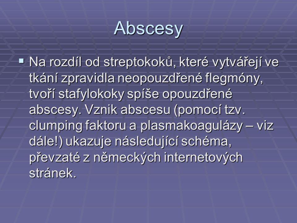 Abscesy  Na rozdíl od streptokoků, které vytvářejí ve tkání zpravidla neopouzdřené flegmóny, tvoří stafylokoky spíše opouzdřené abscesy.