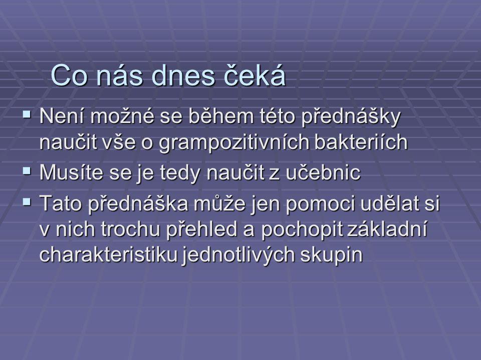http://memiserf.medmikro.ruhr-uni-bochum.de