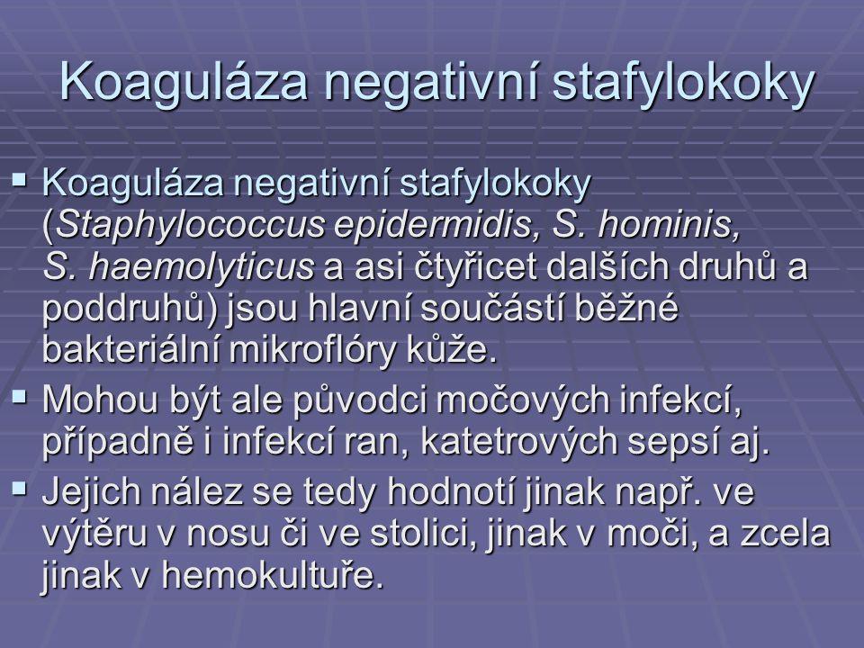 Koaguláza negativní stafylokoky  Koaguláza negativní stafylokoky (Staphylococcus epidermidis, S. hominis, S. haemolyticus a asi čtyřicet dalších druh