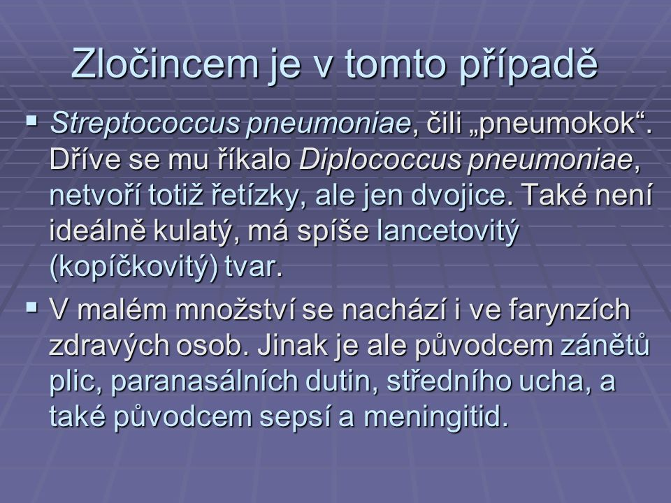 """Zločincem je v tomto případě  Streptococcus pneumoniae, čili """"pneumokok"""". Dříve se mu říkalo Diplococcus pneumoniae, netvoří totiž řetízky, ale jen d"""
