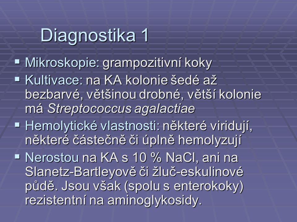 Diagnostika 1  Mikroskopie: grampozitivní koky  Kultivace: na KA kolonie šedé až bezbarvé, většinou drobné, větší kolonie má Streptococcus agalactia