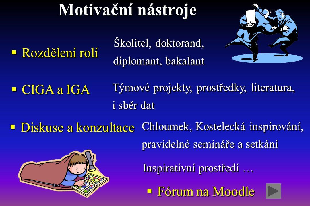 Motivační nástroje  Rozdělení rolí Školitel, doktorand, diplomant, bakalant  CIGA a IGA Týmové projekty, prostředky, literatura, i sběr dat  Diskus