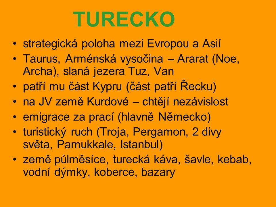 TURECKO strategická poloha mezi Evropou a Asií Taurus, Arménská vysočina – Ararat (Noe, Archa), slaná jezera Tuz, Van patří mu část Kypru (část patří Řecku) na JV země Kurdové – chtějí nezávislost emigrace za prací (hlavně Německo) turistický ruch (Troja, Pergamon, 2 divy světa, Pamukkale, Istanbul) země půlměsíce, turecká káva, šavle, kebab, vodní dýmky, koberce, bazary