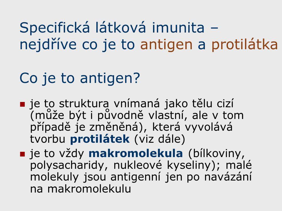 Specifická látková imunita – nejdříve co je to antigen a protilátka Co je to antigen.