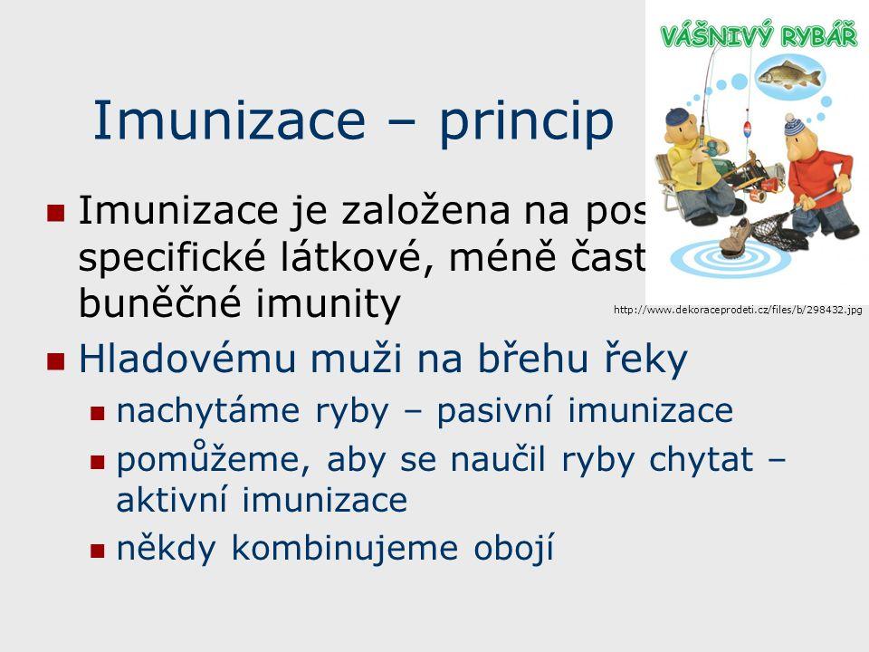 Imunizace – princip Imunizace je založena na posílení specifické látkové, méně často i buněčné imunity Hladovému muži na břehu řeky nachytáme ryby – pasivní imunizace pomůžeme, aby se naučil ryby chytat – aktivní imunizace někdy kombinujeme obojí http://www.dekoraceprodeti.cz/files/b/298432.jpg