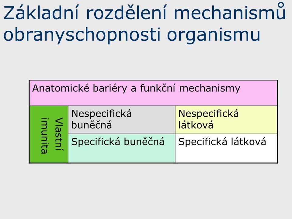 Základní rozdělení mechanismů obranyschopnosti organismu Anatomické bariéry a funkční mechanismy Vlastní imunita Nespecifická buněčná Nespecifická látková Specifická buněčnáSpecifická látková