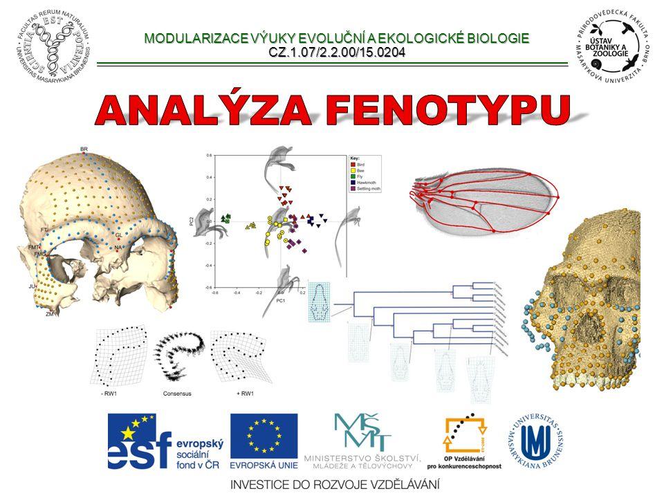 Genetické metody a morfologie jaká je genetická podstata morfologického znaku.