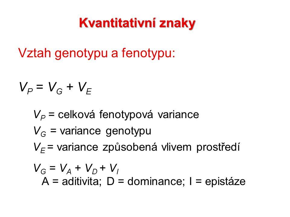 Vztah genotypu a fenotypu: V P = V G + V E V P = celková fenotypová variance V G = variance genotypu V E = variance způsobená vlivem prostředí V G = V