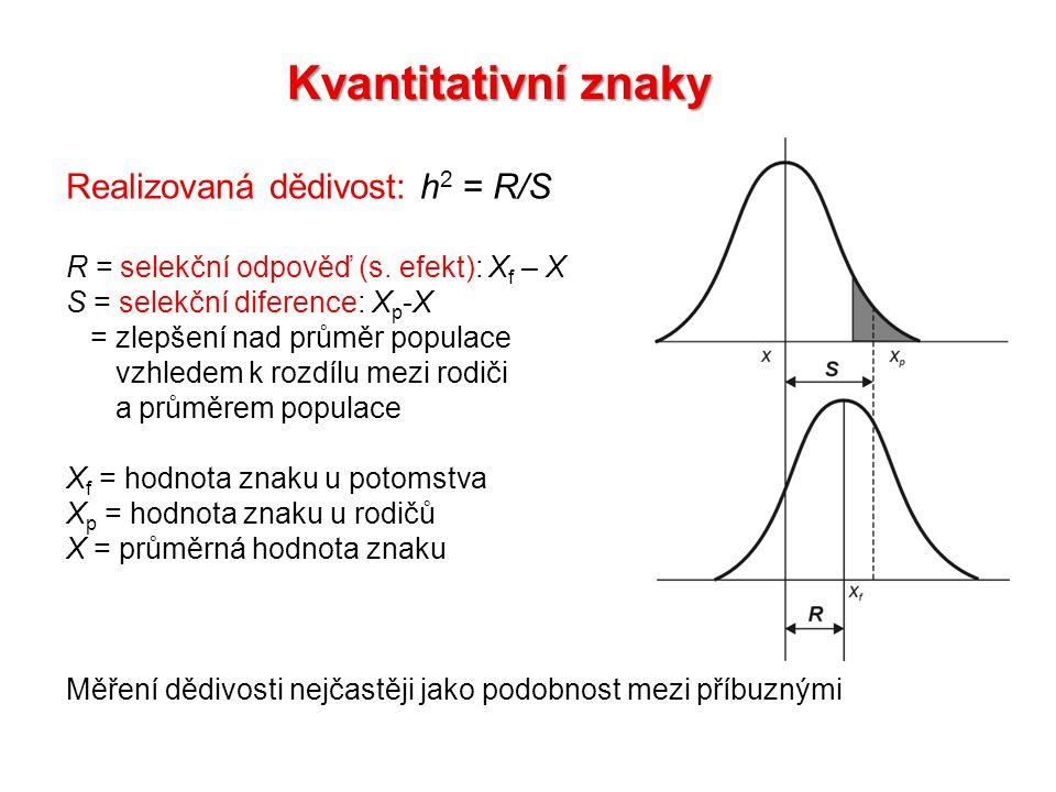 Kvantitativní znaky Realizovaná dědivost: h 2 = R/S R = selekční odpověď (s. efekt): X f – X S = selekční diference: X p -X = zlepšení nad průměr popu