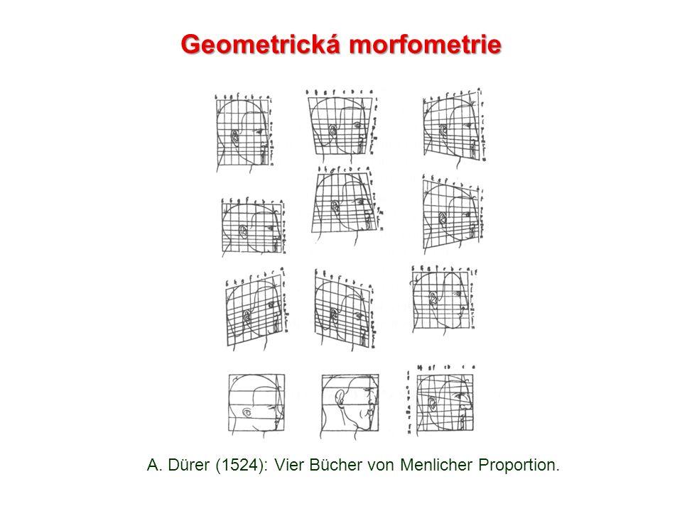 A. Dürer (1524): Vier Bücher von Menlicher Proportion. Geometrická morfometrie