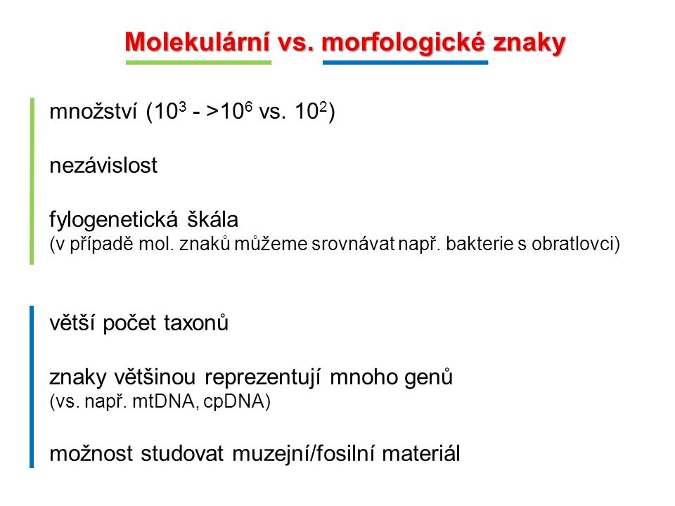 Molekulární vs. morfologické znaky množství (10 3 - >10 6 vs. 10 2 ) nezávislost fylogenetická škála (v případě mol. znaků můžeme srovnávat např. bakt