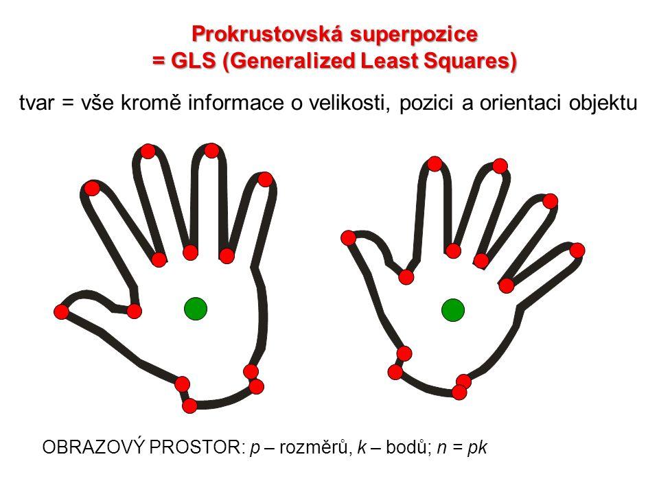 OBRAZOVÝ PROSTOR: p – rozměrů, k – bodů; n = pk tvar = vše kromě informace o velikosti, pozici a orientaci objektu Prokrustovská superpozice = GLS (Ge