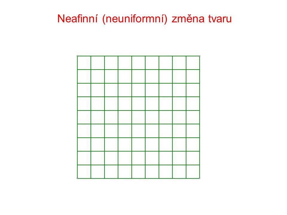 Neafinní (neuniformní) změna tvaru
