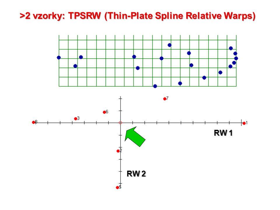 RW 1 RW 2 >2 vzorky: TPSRW (Thin-Plate Spline Relative Warps)