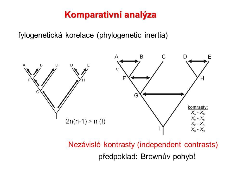 fylogenetická korelace (phylogenetic inertia) Nezávislé kontrasty (independent contrasts) 2n(n-1) > n (!) předpoklad: Brownův pohyb!