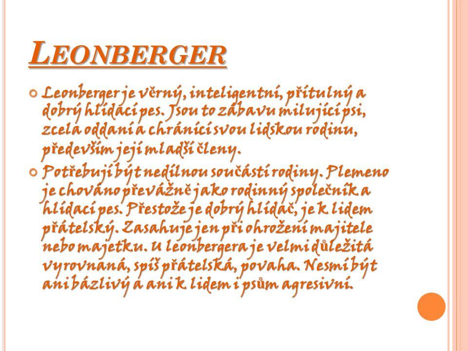 L EONBERGER Leonberger je v ě rný, inteligentní, p ř ítulný a dobrý hlídací pes. Jsou to zábavu milující psi, zcela oddaní a chránící svou lidskou rod
