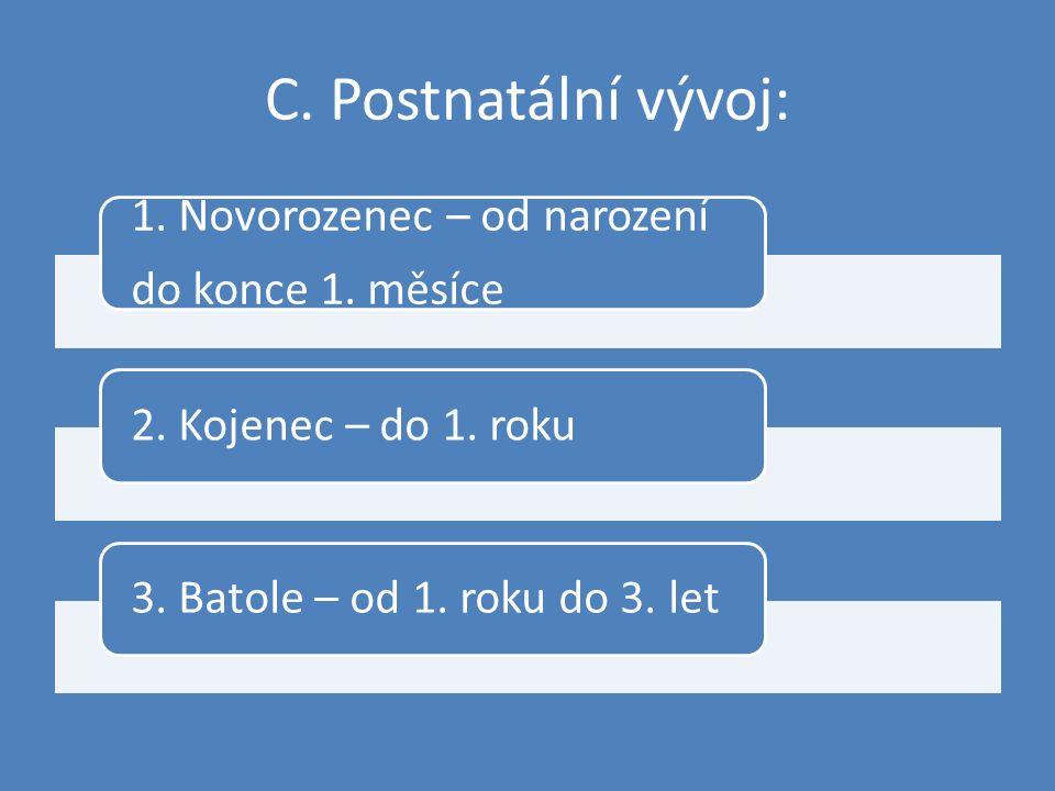 C. Postnatální vývoj: 1. Novorozenec – od narození do konce 1. měsíce 2. Kojenec – do 1. roku 3. Batole – od 1. roku do 3. let