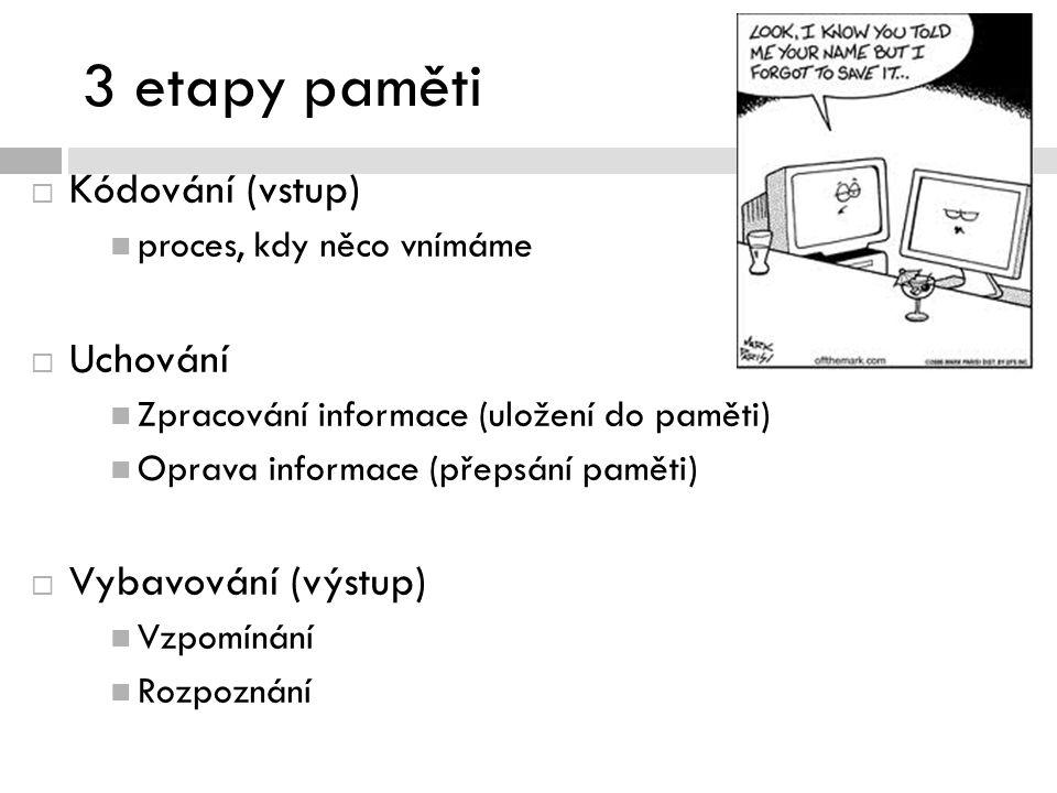 3 etapy paměti  Kódování (vstup) proces, kdy něco vnímáme  Uchování Zpracování informace (uložení do paměti) Oprava informace (přepsání paměti)  Vybavování (výstup) Vzpomínání Rozpoznání