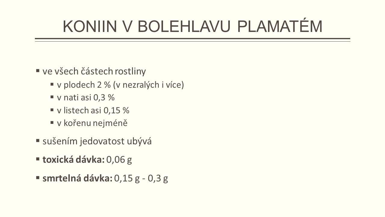 KONIIN V BOLEHLAVU PLAMATÉM  ve všech částech rostliny  v plodech 2 % (v nezralých i více)  v nati asi 0,3 %  v listech asi 0,15 %  v kořenu nejméně  sušením jedovatost ubývá  toxická dávka: 0,06 g  smrtelná dávka: 0,15 g - 0,3 g