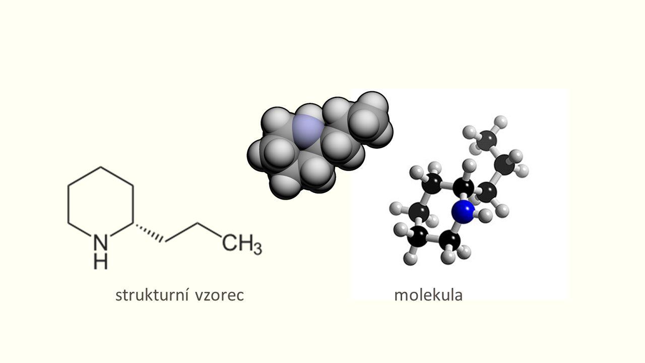 strukturní vzorecmolekula