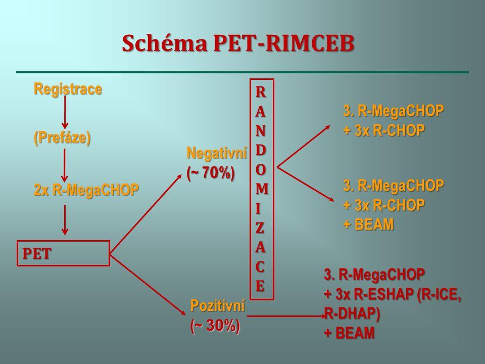 Schéma PET-RIMCEB Registrace(Prefáze) 2x R-MegaCHOP Negativní (~ 7 0 %) Pozitivní (~ 30 %) RANDOMIZACERANDOMIZACERANDOMIZACERANDOMIZACE 3.