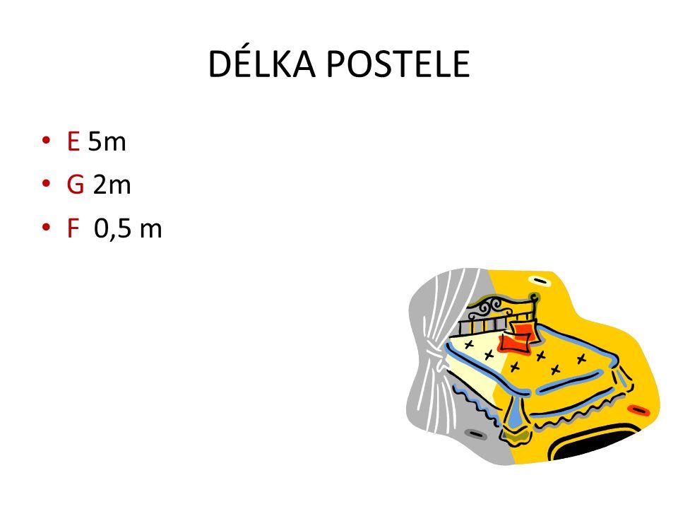 DÉLKA POSTELE E 5m G 2m F 0,5 m