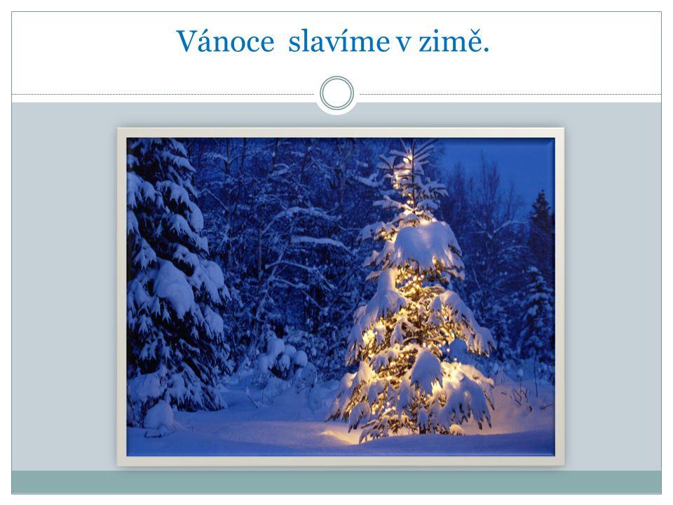 Vánoce slavíme v zimě.