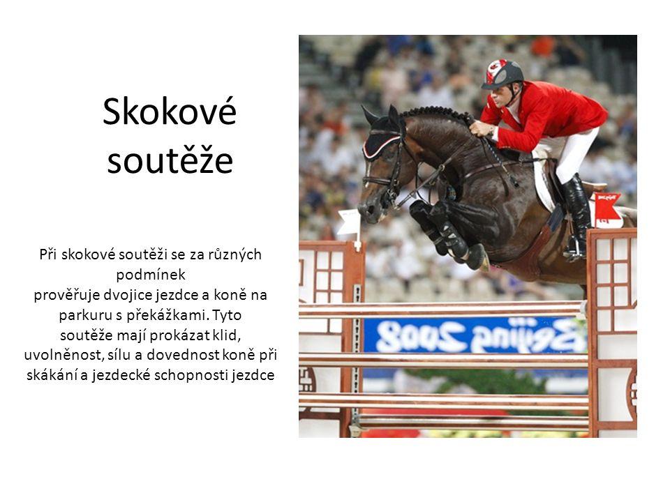 Skokové soutěže Při skokové soutěži se za různých podmínek prověřuje dvojice jezdce a koně na parkuru s překážkami.