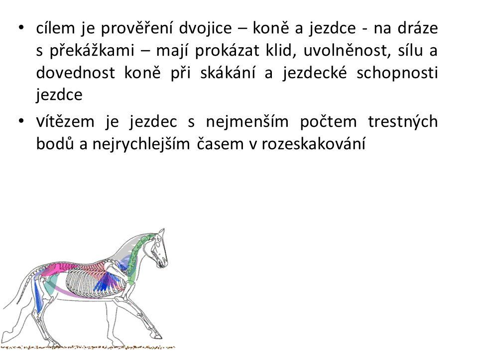 Pozdrav Jezdci zdraví rozhodčí (popř.oficiální osobnosti) po vjezdu do kolbiště.