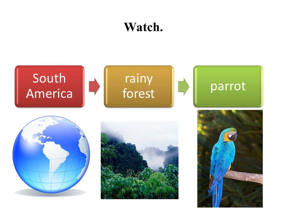 Watch. Antarcticsnowpenguin