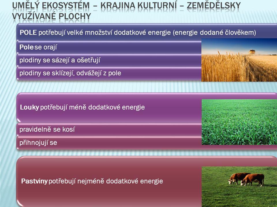 POLE potřebují velké množství dodatkové energie (energie dodané člověkem) Pole se orajíplodiny se sázejí a ošetřují plodiny se sklízejí, odvážejí z pole Louky potřebují méně dodatkové energie pravidelně se kosípřihnojují se Pastviny potřebují nejméně dodatkové energie