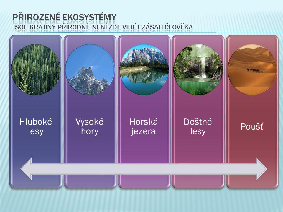 Hluboké lesy Vysoké hory Horská jezera Deštné lesy Poušť