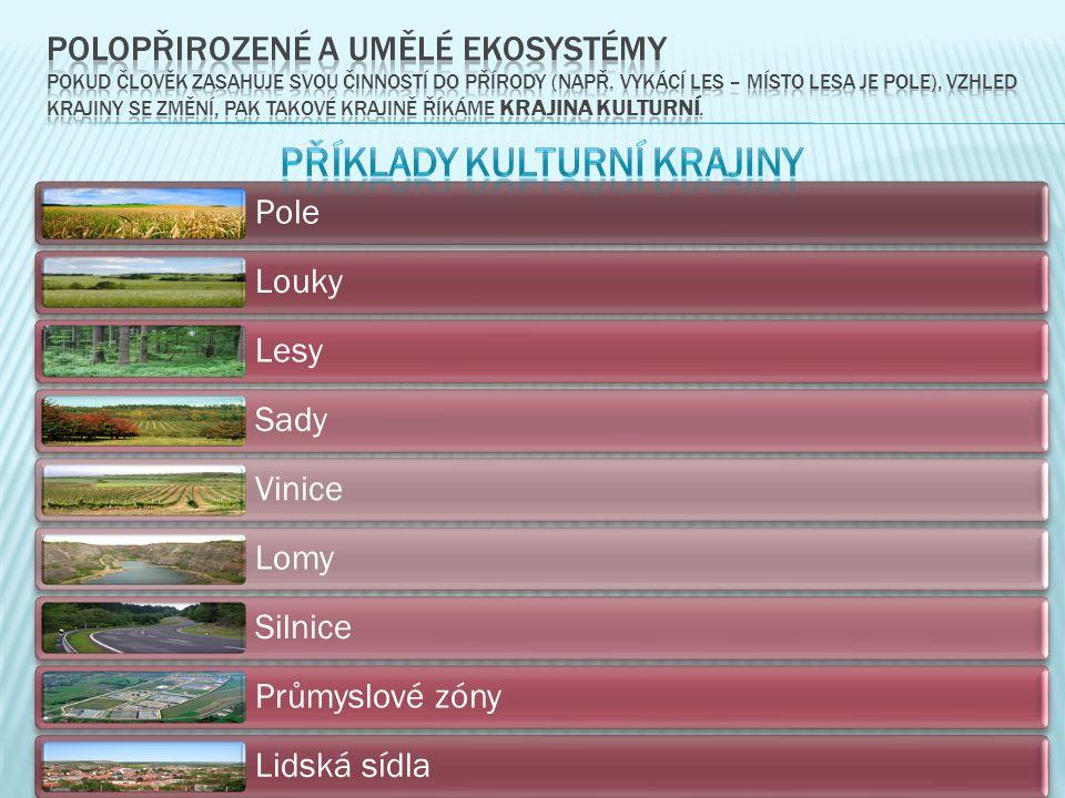 Pole Louky Lesy Sady Vinice Lomy Silnice Průmyslové zóny Lidská sídla