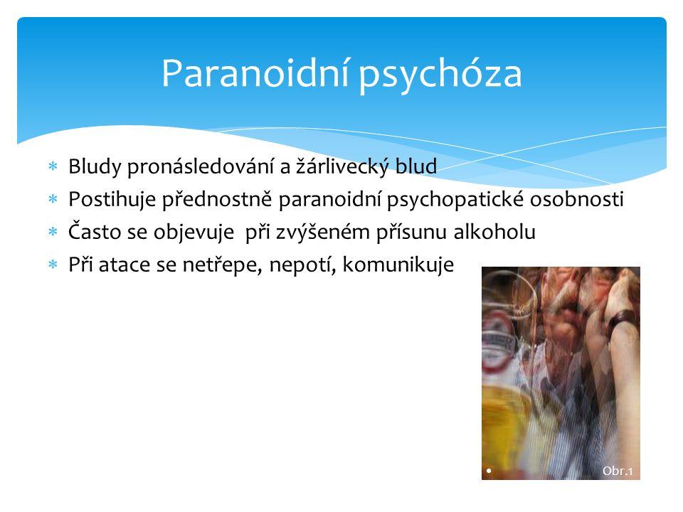  Bludy pronásledování a žárlivecký blud  Postihuje přednostně paranoidní psychopatické osobnosti  Často se objevuje při zvýšeném přísunu alkoholu 