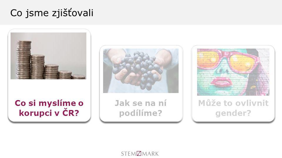 Co jsme zjišťovali Co si myslíme o korupci v ČR Jak se na ní podílíme