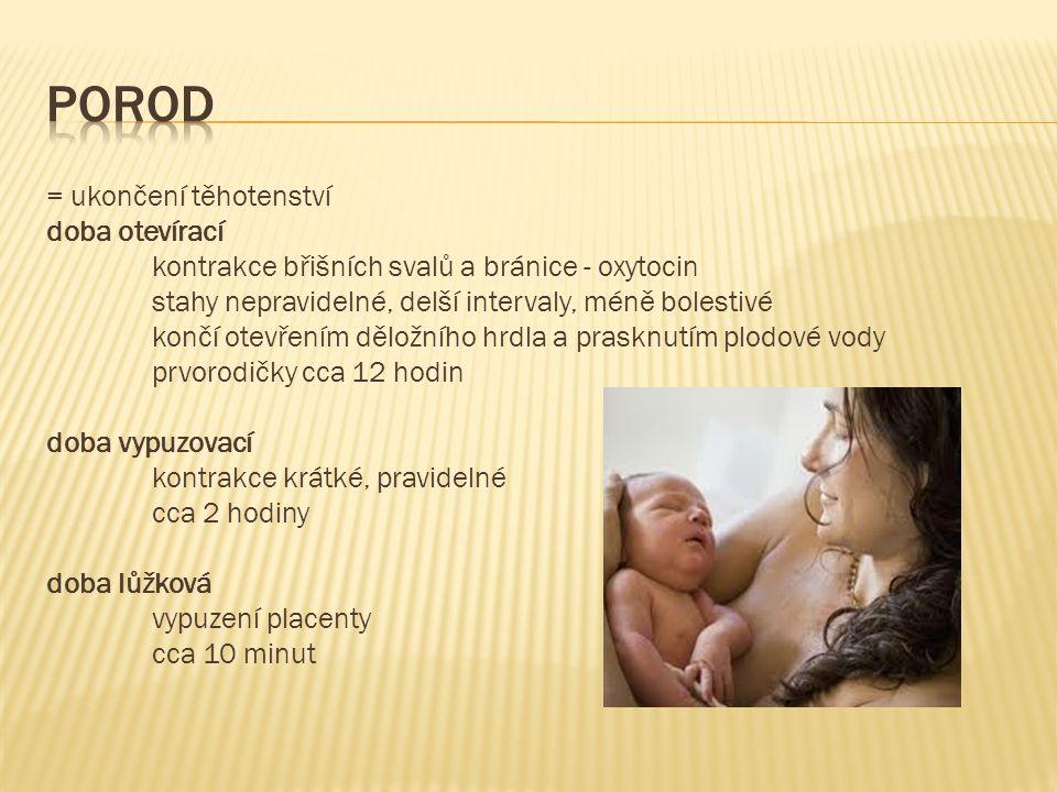 = ukončení těhotenství doba otevírací kontrakce břišních svalů a bránice - oxytocin stahy nepravidelné, delší intervaly, méně bolestivé končí otevřením děložního hrdla a prasknutím plodové vody prvorodičky cca 12 hodin doba vypuzovací kontrakce krátké, pravidelné cca 2 hodiny doba lůžková vypuzení placenty cca 10 minut